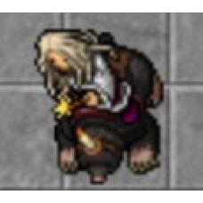 Master Sorcerer 534 (OPEN PVP) Quelibra
